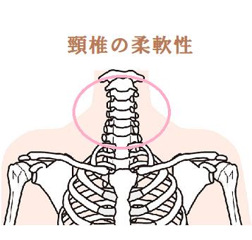 """頸椎の柔軟性を高めてのイラスト"""""""