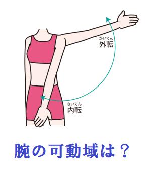 腕の可動域のイラスト